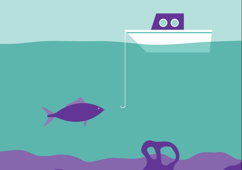 Consumer Focused Review of the Finfish Food Chain
