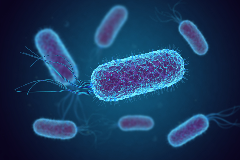 Assessment of antibiotic resistant Escherichia coli in meat production systems