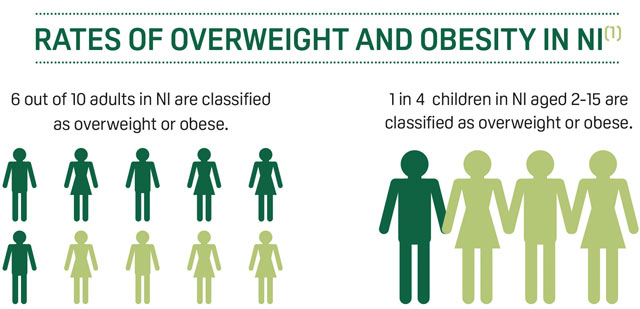 rates of overweight and obesity in NI