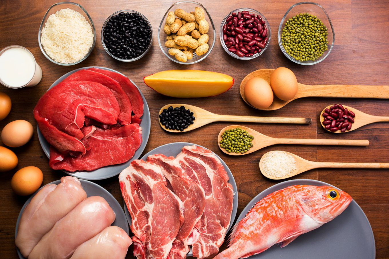 Meat and alternative sources of protein | safefood